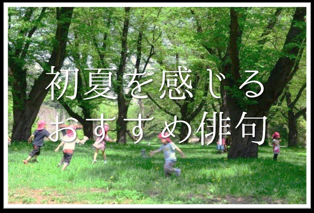 【初夏の俳句 おすすめ22選】中学・高校生向け!!季語を含んだ有名俳句作品集を紹介!