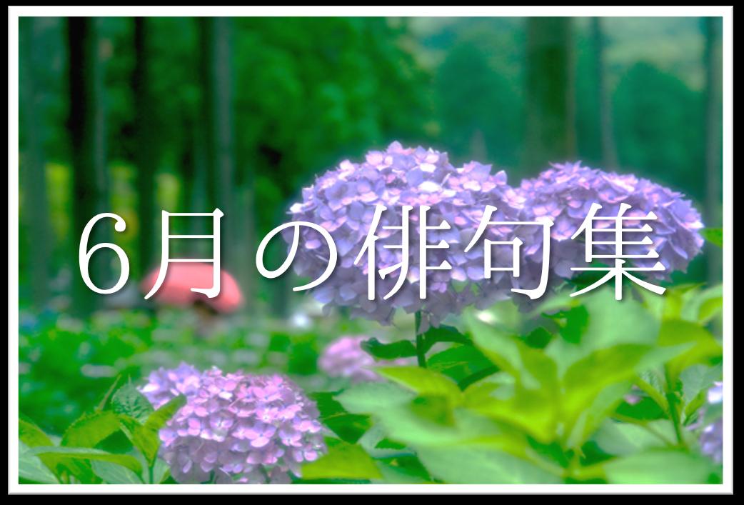 【6月の有名俳句 20選】すごく上手い!!季語を含んだおすすめ俳句作品集を紹介!