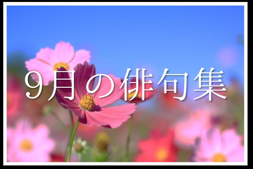 【9月の有名俳句 20選】すごく上手い!!季語を含んだおすすめ俳句作品集を紹介!
