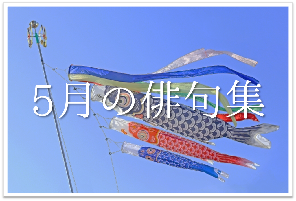 【5月の俳句 おすすめ20選】中学生向け!!5月の季語を含んだ有名&素人俳句作品集を紹介!