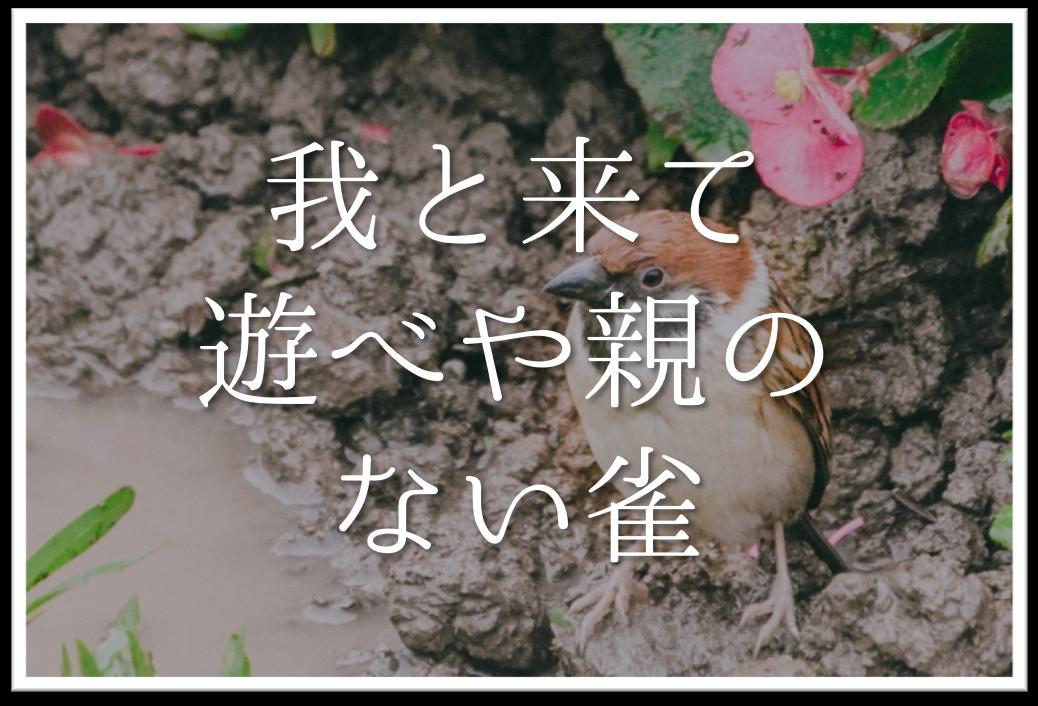 【我と来て遊べや親のない雀】俳句の季語や意味・表現技法・作者など徹底解説!!