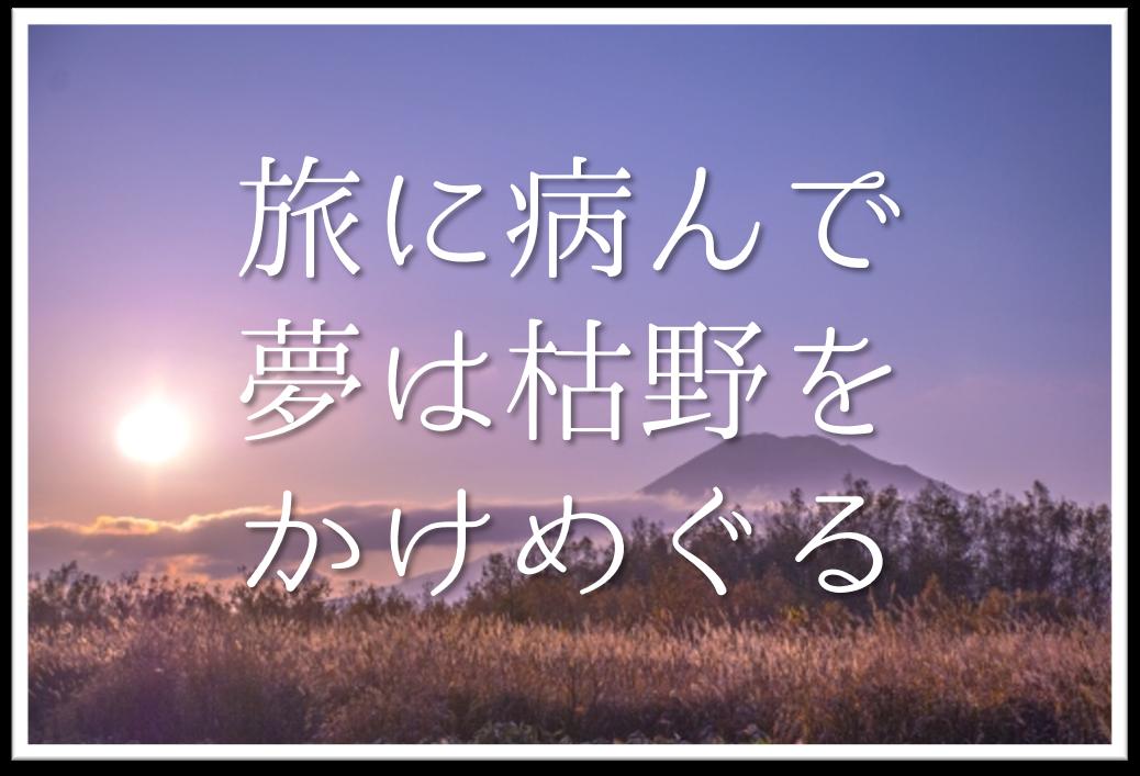 【旅に病んで夢は枯野をかけめぐる】俳句の季語や意味・表現技法・鑑賞文・作者など徹底解説!!