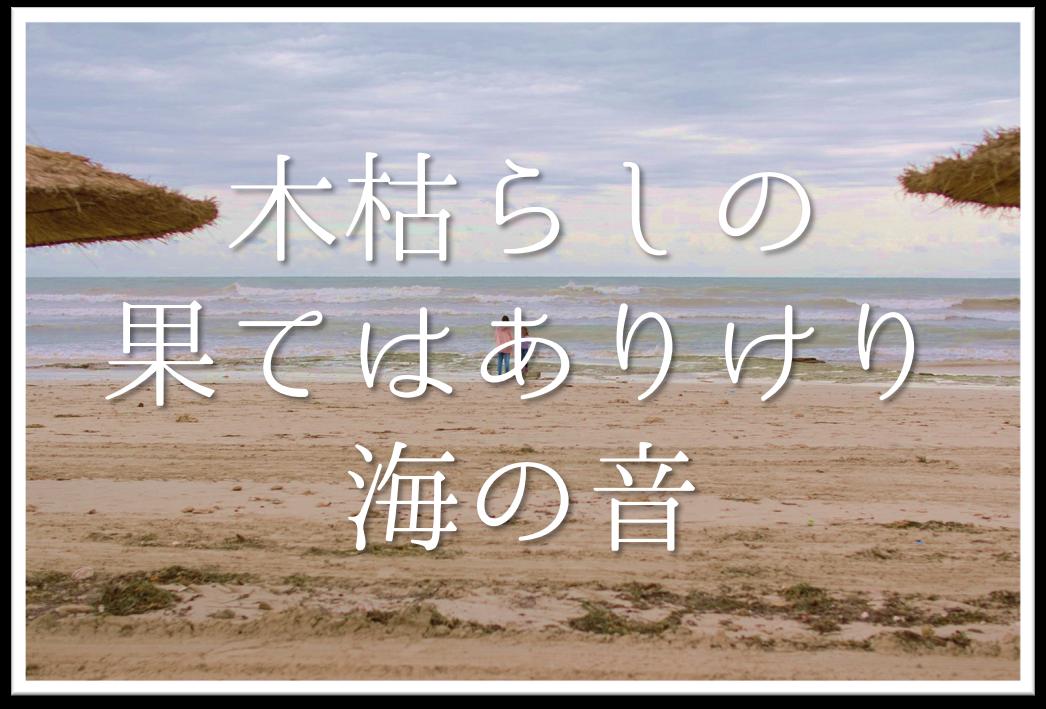 【木枯らしの果てはありけり海の音】俳句の季語や意味・表現技法・鑑賞文・作者など徹底解説!!