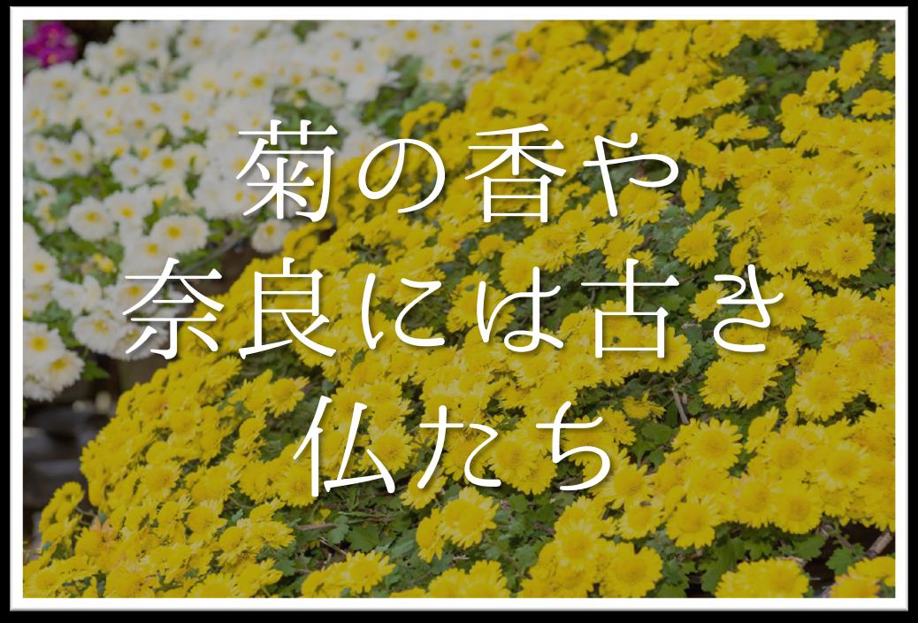 【菊の香や奈良には古き仏たち】俳句の季語や意味・表現技法・鑑賞文・作者など徹底解説!!