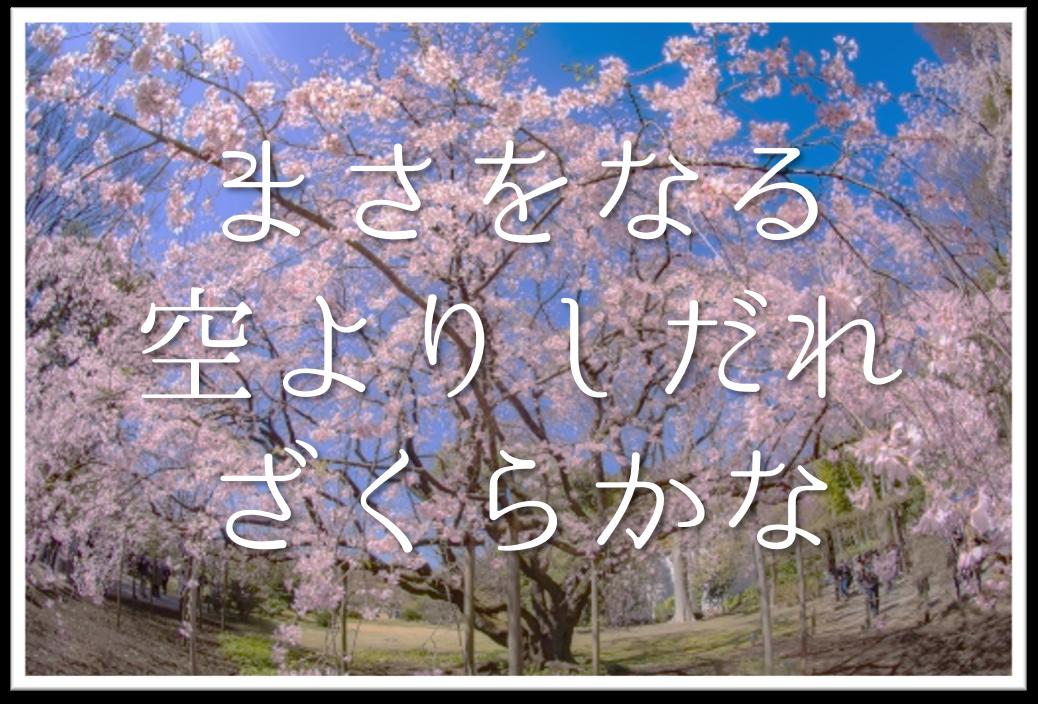 【まさをなる空よりしだれざくらかな】俳句の季語や意味・表現技法・鑑賞文・作者など徹底解説!!