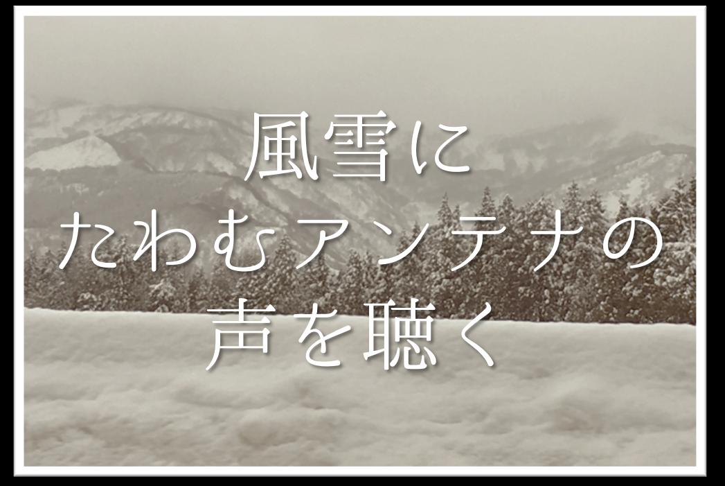 【風雪にたわむアンテナの声を聴く】俳句の季語や意味・表現技法・鑑賞など徹底解説!!
