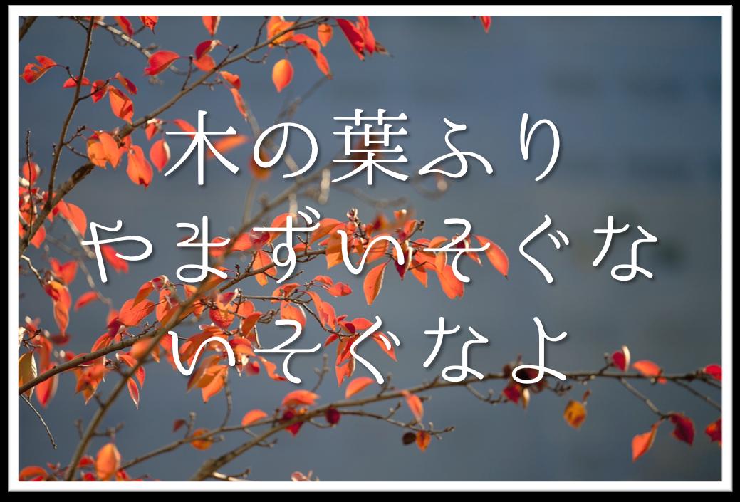 【木の葉ふりやまずいそぐないそぐなよ】俳句の季語や意味・表現技法・鑑賞文・作者など徹底解説!!