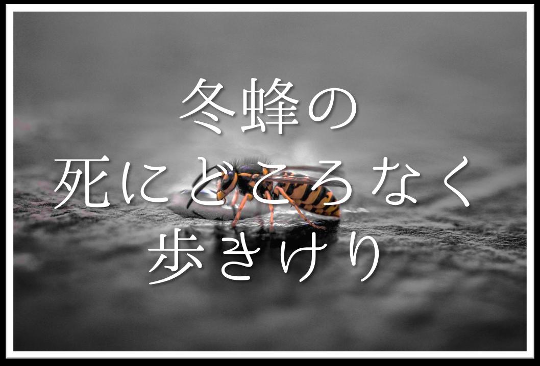 【冬蜂の死にどころなく歩きけり】俳句の季語や意味・表現技法・鑑賞文など徹底解説!!