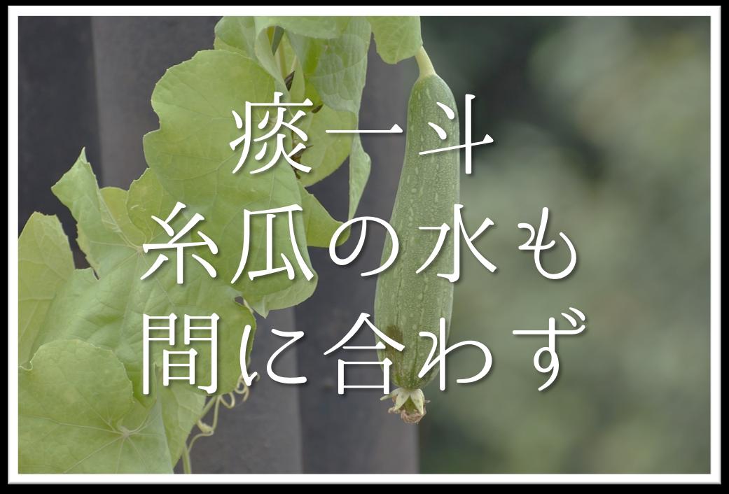 【痰一斗糸瓜の水も間に合わず】俳句の季語や意味や解釈・表現技法・作者など徹底解説
