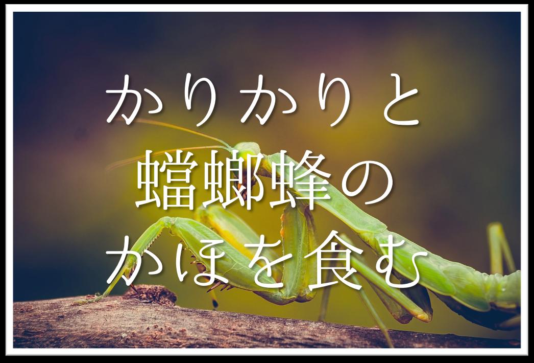 【かりかりと蟷螂蜂のかほを食む】俳句の季語や意味・表現技法・鑑賞文・作者など徹底解説!!