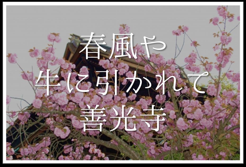 【春風や牛に引かれて善光寺】俳句の季語や意味・表現技法・作者など徹底解説!!