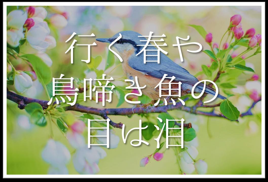 【行く春や鳥啼き魚の目は泪】俳句の季語や意味・表現技法・鑑賞文・作者など徹底解説!!