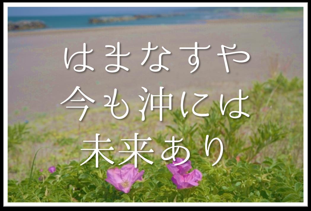 【はまなすや今も沖には未来あり】俳句の季語や意味・表現技法・鑑賞文・作者など徹底解説!!