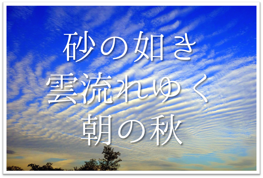 【砂の如き雲流れゆく朝の秋】俳句の季語や意味・表現技法・鑑賞・作者など徹底解説!!