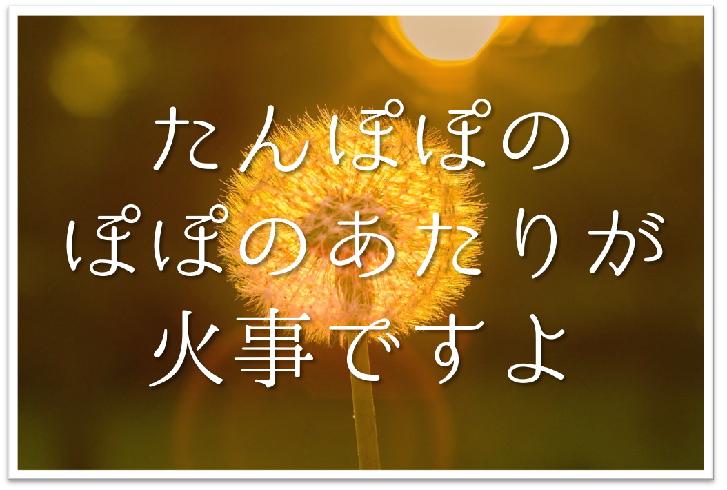 【たんぽぽのぽぽのあたりが火事ですよ】俳句の季語や意味・表現技法・作者など徹底解説!!