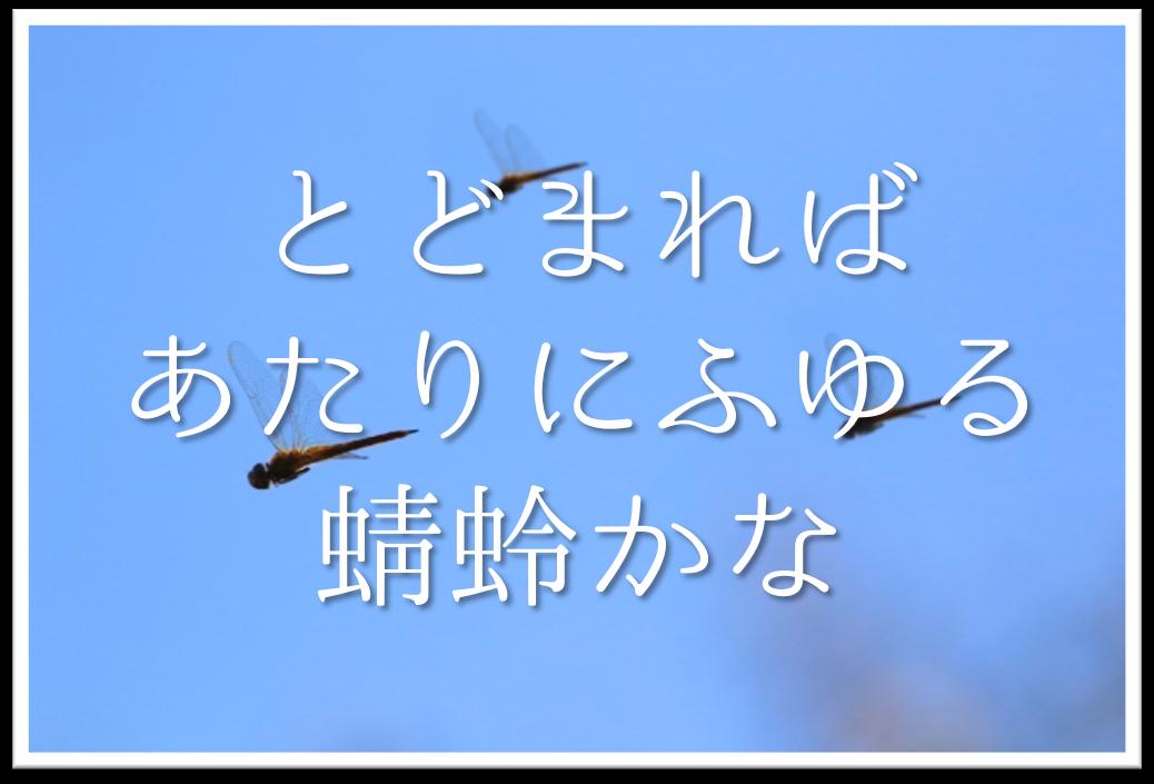 【とどまればあたりにふゆる蜻蛉かな】俳句の季語や意味・表現技法・鑑賞文・作者など徹底解説!!