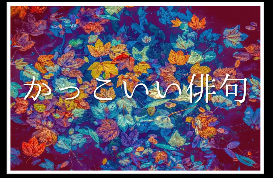 【かっこいい俳句 20選】春・夏・秋・冬!!季語を含むおすすめ素人俳句作品を紹介!