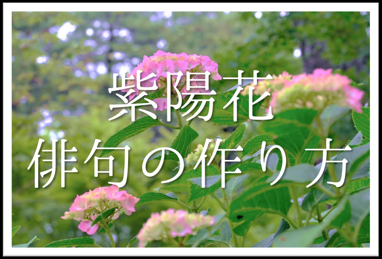 【紫陽花の俳句の作り方】簡単!!アジサイの季語を含む夏の俳句の作成方法を紹介