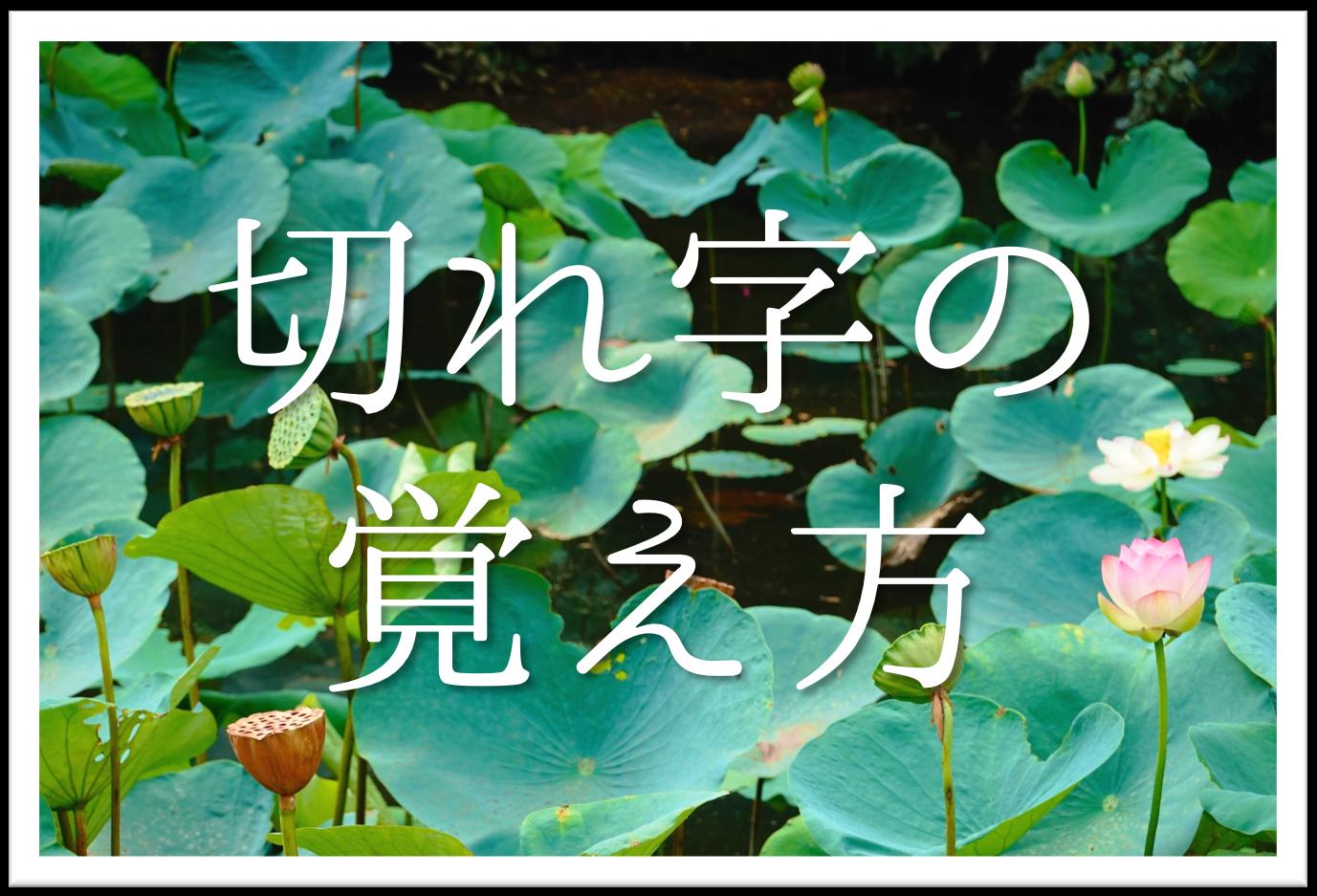 【俳句の切れ字の覚え方】簡単にわかりやすく解説!意味や効果・種類など