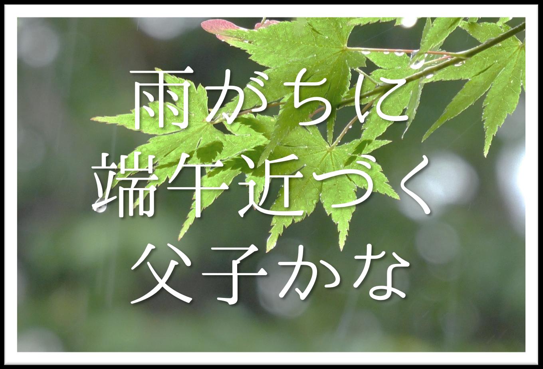 【雨がちに端午近づく父子かな】俳句の季語や意味・表現技法・鑑賞文・作者など徹底解説!!