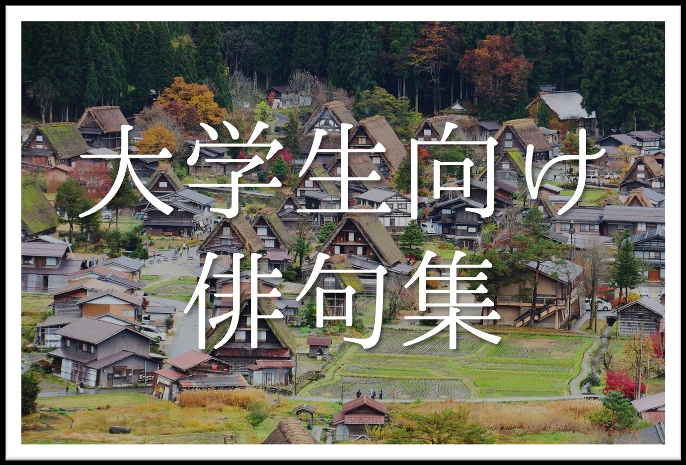【大学生向け俳句 20選】春・夏・秋・冬!!季語を含むおすすめ有名&素人俳句を紹介!