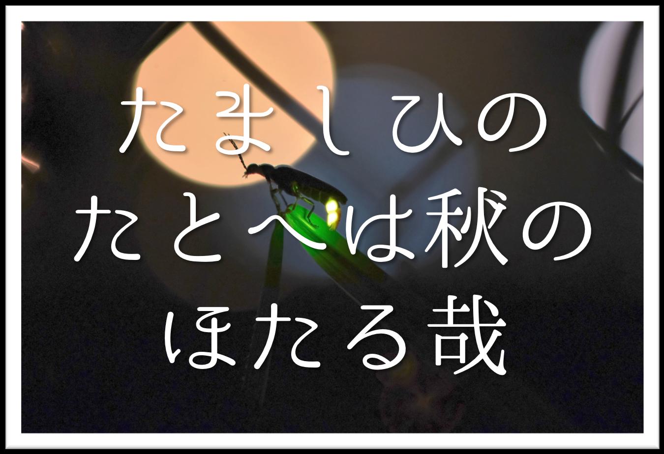 【たましひのたとへば秋のほたる哉】俳句の季語や意味・表現技法・鑑賞・作者など徹底解説!!