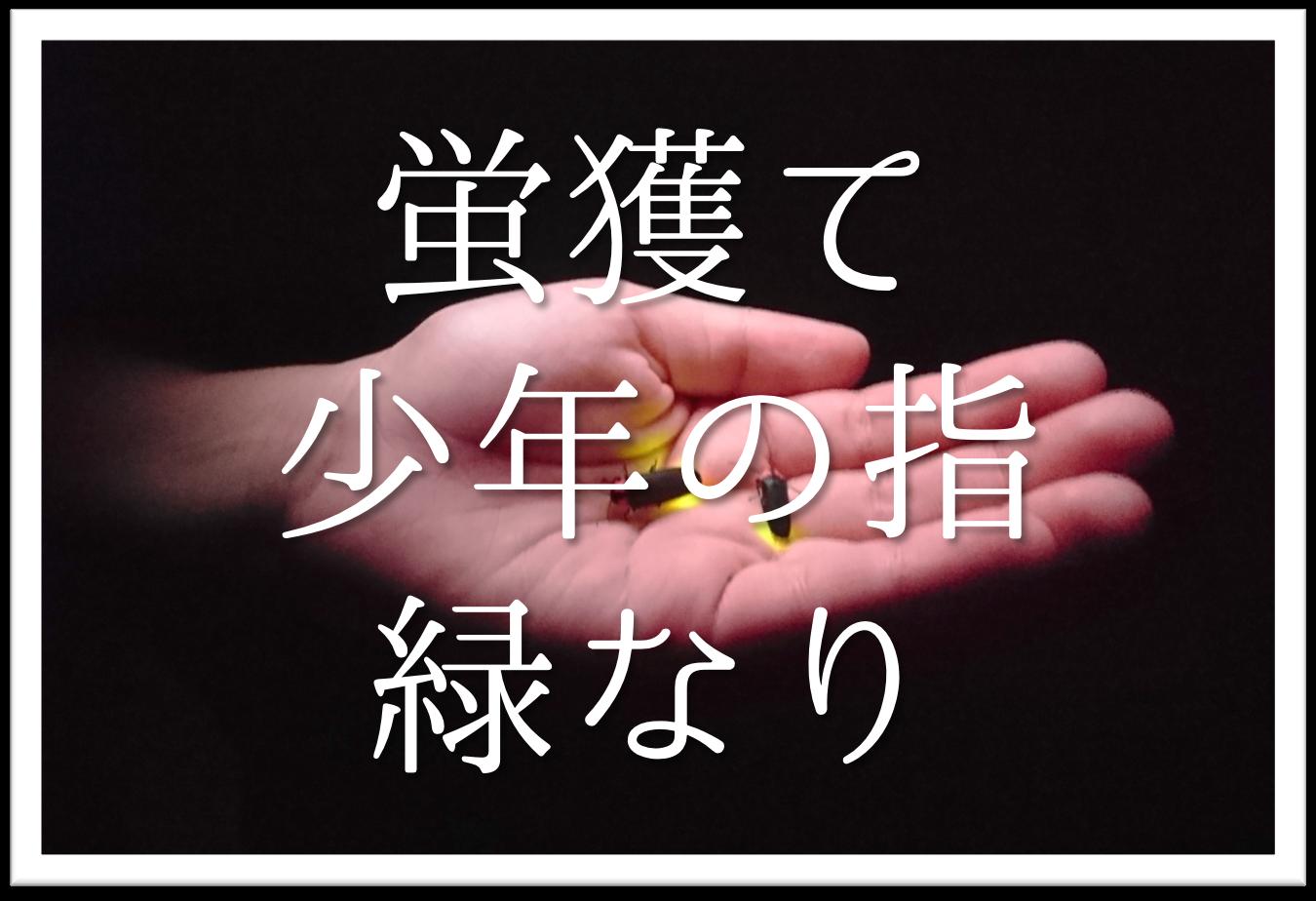 【蛍獲て少年の指緑なり】俳句の季語や意味・表現技法・鑑賞・作者など徹底解説!!