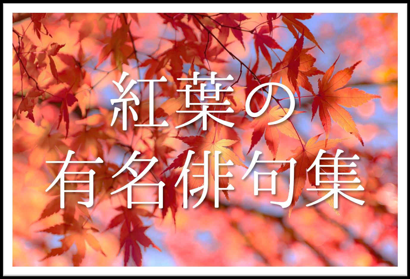 【紅葉(もみじ)の有名俳句 20選】知っておきたい!!季語を含むおすすめ俳句を紹介!
